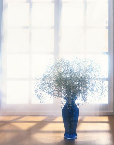 In luna mireselor, floarea miresei