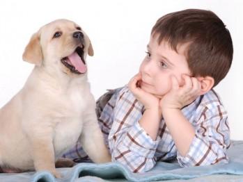 Cele mai potrivite rase de caini pentru copii