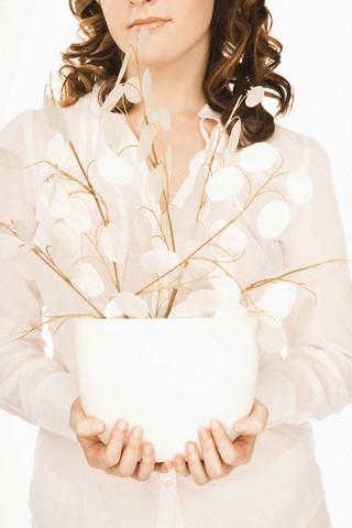 Lunaria, iarba dragostei sau planta vrajitoarelor