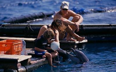 Terapii cu vraci si delfini pentru copiii autisti, interventii de multe ori ridicole si costisitoare