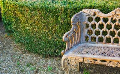 Sfaturi Feng Shui: Elementul Lemn in amenajarea gradinii