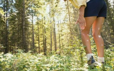 Remedii non-toxice impotriva mancarimii muscaturilor de tantari