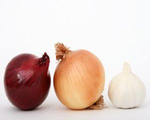 Cele mai bune 9 antibiotice naturale