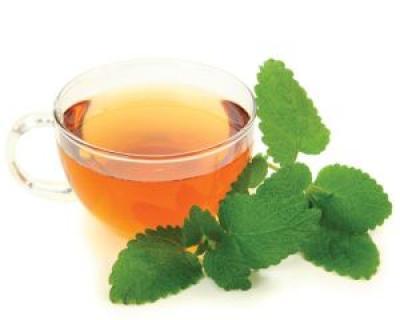 Ceaiul de roinita - top 4 beneficii pentru sanatate