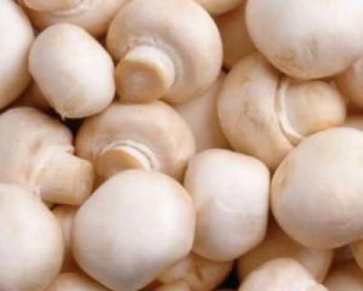 De ce este recomandat sa consumam ciuperci zilnic