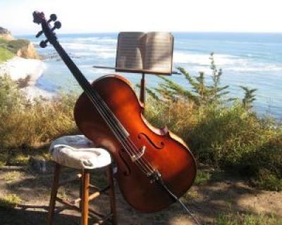 Piata Festivalului - regalul muzicii simfonice in aer liber