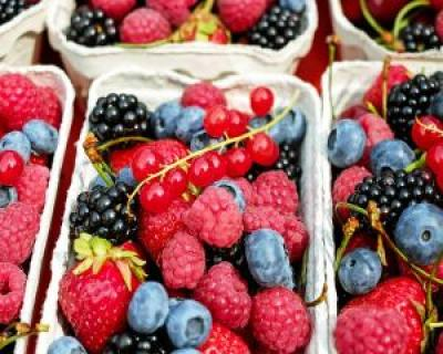 4 vitamine pentru rinichi sanatosi
