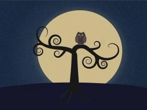 Luna, la cea mai apropiata distanta fata de Pamant din ultimii 19 ani. Exista motive de ingrijorare?