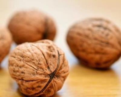 Top 7 alimente care stimuleaza memoria si puterea de concentrare