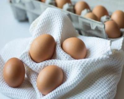 De ce este important sa mancam oua
