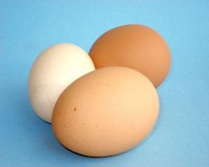5 Motive pentru a consuma oua BIO