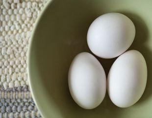 Cum iti dai seama ca un ou este stricat?