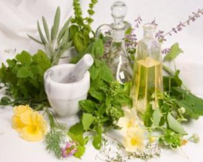 Plante medicinale folosite in tratamentul bolilor de inima