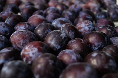 Ce beneficii are consumul de prune pentru intreg organismul!
