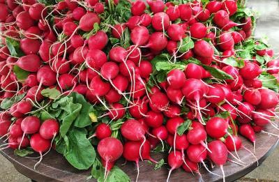 5 legume de plantat in aceasta toamna