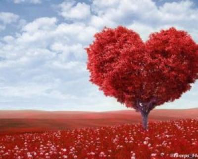 Rugaciunea iubirii - indragosteste-te de tine prima oara