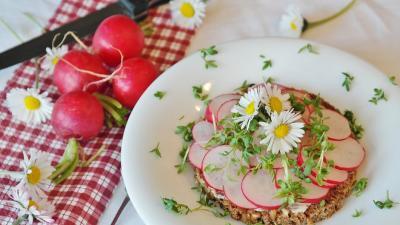 Salata de primavara cu ridichi, detoxifiere si slabire in acelasi timp