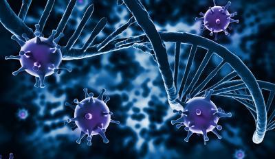 Schimbari ale sistemului imunitar resimtite in timpul sarcinii