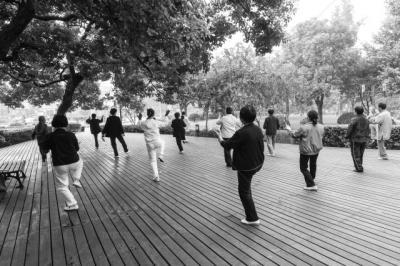 Secretul unei vieti echilibrate: cum iti imbunatateste Tai Chi calitatea vietii