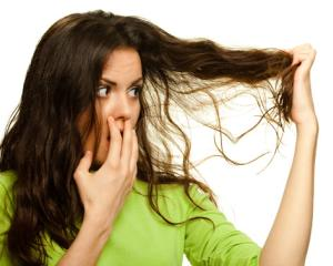 Tratamente care fac minuni pentru ingrijirea parului: uleiul de eucalipt
