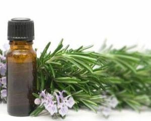 Nas infundat? Foloseste ulei de eucalipt pentru a respira mai usor