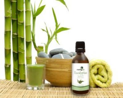 6 utilizari ale uleiului de eucalipt