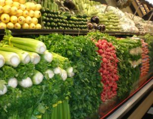 Vegetarianismul si copiii