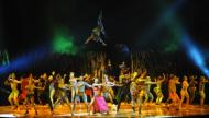 Spectacole de top in 2012: Red Hot Chili Peppers si Cirque du Soleil