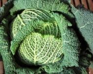 2 salate care te ajuta sa slabesti minim 2 kilograme intr-o saptamana!