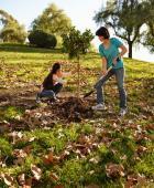 Studentii pot primi pentru actiuni de voluntariat credite consemnate in actele de studii