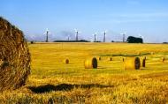 Desi avem cel mai dezvoltat sectorul eolian din Europa, Romania mai poate atrage investitii de peste 5 miliarde de euro in acest domeniu, pana in 2013