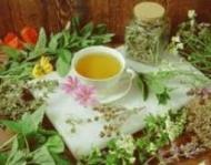 Cum se strang plantele medicinale