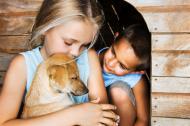 Oamenii care au animale de companie sunt mai fericiti