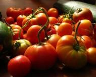 4 legume esentiale pentru o alimentatie bio de top!