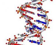 Ultima dieta de care vei avea nevoie: Dieta in functie de ADN