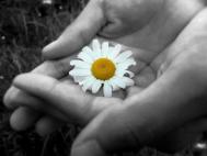 Fii generoasa