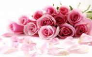 Trandafirii - afacerea secreta a agricultorilor de succes!