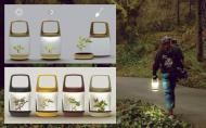 Lanterna-terariu: face lumina si poti sa si cresti o planta in ea