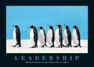 Cei patru S ai unui bun leadership