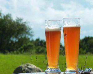 Consumul moderat de bere, asociat cu un risc scazut de diabet de tip 2