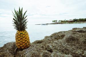 Dieta cu ananas - cum sa scapi de 5 kg rapid