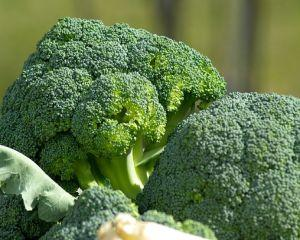 6 alimente care previn imbolnavirile in sezonul rece