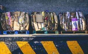 Cum isi reduc marile companii impactul asupra mediului