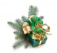 Acordarea tichetelor cadou de Sarbatori
