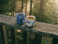 Cuvintele cu efect magic asupra cafelei