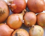 Dr. Oz: 5 alimente uimitoare care te feresc de cancer