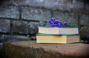 Top 15 citate inspirationale spuse de Charlotte Bronte