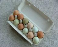 5 moduri ingenioase de a folosi cojile de ou
