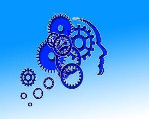 Dificultati de concentrare si probleme de memorie? Iata alimentul care te scapa de aceste probleme