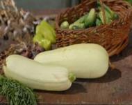 Reteta zilei: Dovlecei pane cu sos de usturoi